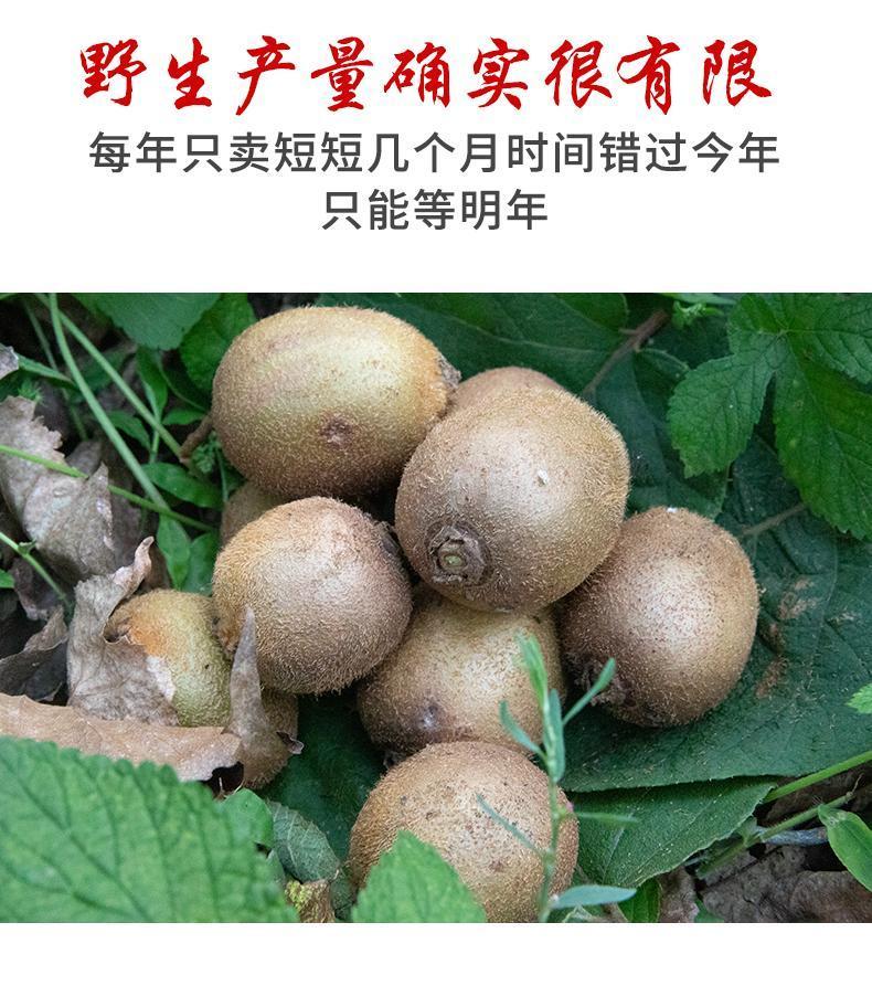 http://xinslu.com/attachment/images/3/2019/09/TiuezxgIAA3m7zIBs3iZg1S3XP7bEB.jpg