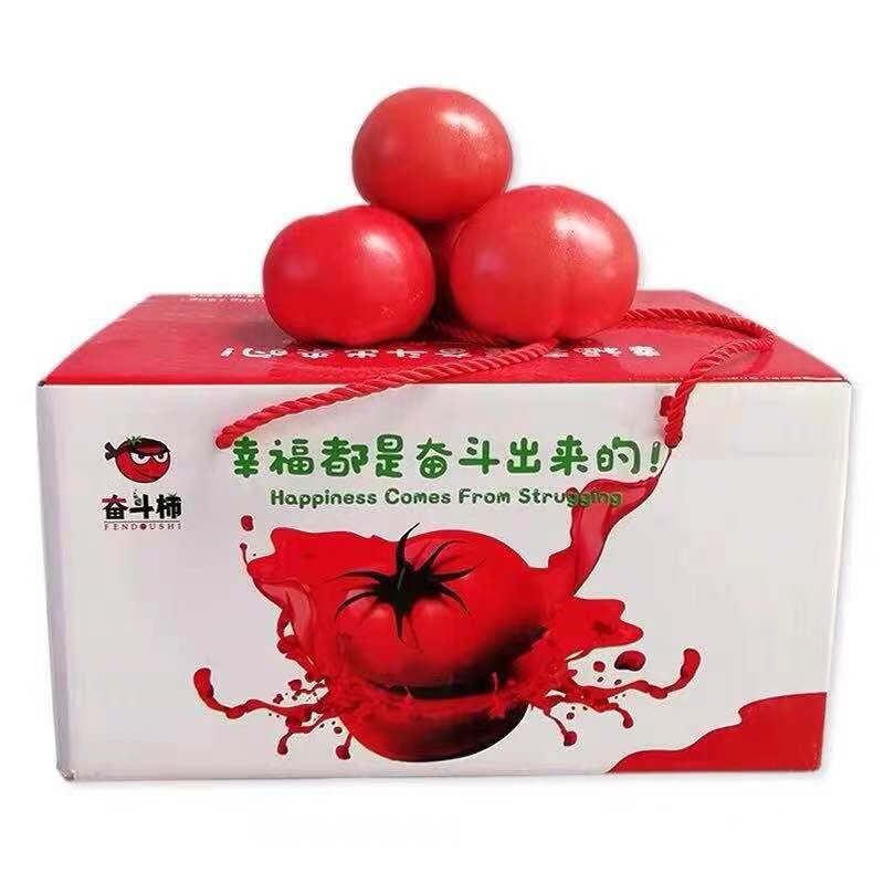 西红柿普罗旺斯新鲜蔬菜自然熟小时候的味道奋斗柿沙瓤五斤礼盒装
