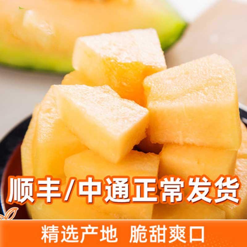 海南哈密瓜2个装5-7斤西州蜜新鲜瓜水果